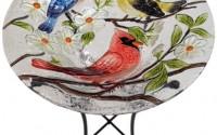 Continental-Art-Center-Cac2412801-Bird-Bath-Glass-Bowl-13-By-2-inch-Three-Birds3.jpg