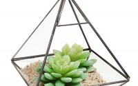 Hanging-Clear-Glass-Prism-Air-Plant-Terrarium-Tabletop-Succulent-Planter-Tea-Light-Candle-Holder15.jpg