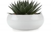 T4u-6-5-Inch-Ceramic-White-Round-Simple-Design-Sucuulent-Plant-Pot-cactus-Plant-Pot-Flower-Pot-container-planter10.jpg