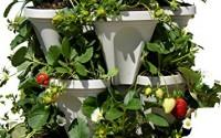 3-Tier-Stackable-Garden-Indoor-Outdoor-Vertical-Planter-Set-Self-Watering-Tiers-From-Top-Down-Grow-Fresh1.jpg