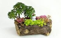 Cement-rabbit-pot-Cacti-Succulent-Plant-Pot-Flower-Planter-Mini-Garden-Design-13.jpg