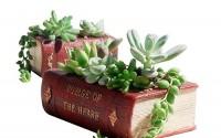 European-Retro-Book-Shape-Design-Resin-Succulent-Plant-Container-Cactus-Flower-Planter-Pot-31.jpg